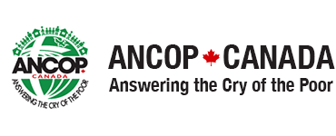 ANCOP Foundation International Inc Logo